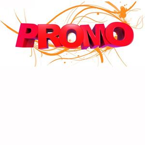 Promotions sur les sacs de livraison de pizza, et sac de livraison restauration