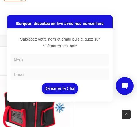 Chat en ligne sac livraison